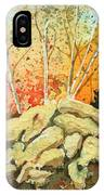 Triptych Panel 2 IPhone Case