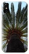Tropical Summer Palm Tree IPhone Case