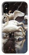 Trumpeter Swans In Bow IPhone Case
