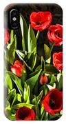 Tulip Beauties IPhone Case