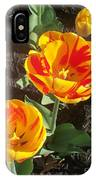 Tulip Red And Orange IPhone Case