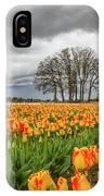 Tulip Rows IPhone Case