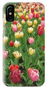 Tulip Time Trail IPhone Case