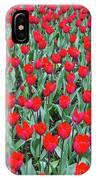 Tulips In Kristiansund, Norway IPhone X Case