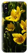 Tulips In Sping IPhone Case