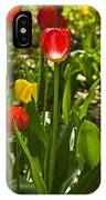 Tulips In The Garden IPhone Case