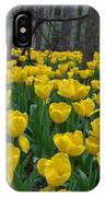 Tulips In The Woods IPhone Case