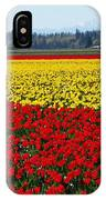 Tulips Of The Skagit Valley IPhone Case