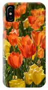Tulips Yellow And Tangerine IPhone Case