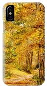 Tunnel Of Gold IPhone Case