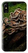 Turkey Tail IPhone Case