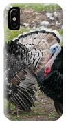 Turkeys In The Yard At Laguna Guerrero IPhone Case