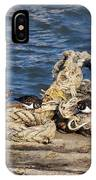 Turnstones At The Harbour IPhone Case