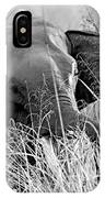 Tusker In The Grass IPhone Case