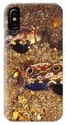 Twinspot Goby Pair , Signigobius IPhone Case