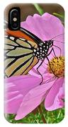 Two Beauties IPhone Case