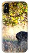 Two Deer In Autumn Meadow IPhone Case