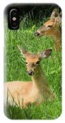 Two Deer In Tall Grass IPhone Case
