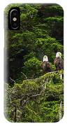 Two Eagles Perched Painterly IPhone Case