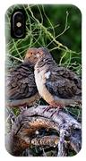 Two Mourning Doves H14 IPhone Case