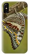 Two Tailed Pasha Butterfly IPhone Case