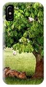 Umbrella Tree IPhone Case