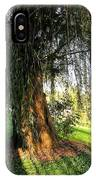Under The Weeping Willow IPhone Case