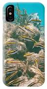 Underwater Photography IPhone Case
