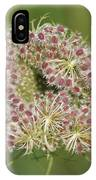 Unfurling Nature Macro Square IPhone Case