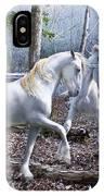 Unicorn Reunion IPhone Case