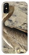 Up Close With A Pelican On A Sand Beach IPhone Case