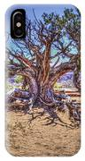 Utah Juniper On The Climb To Delicate Arch Arches National Park IPhone Case
