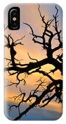 Utah Sunset IPhone Case