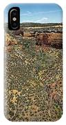 Ute Canyon Panorama IPhone Case