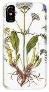 Valerian Flowers, 1613 IPhone Case