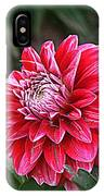 Variegated Colored Dahlia IPhone Case