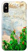 Vase On Decayed Wall IPhone Case
