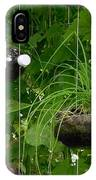 Vegetable Growing In Used Water Bottle 3 IPhone Case