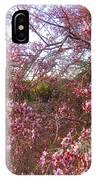 Vekol Wash Desert Ironwood In Bloom IPhone Case
