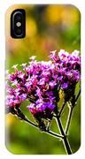 Verbena Bonariensis Evening Light IPhone Case