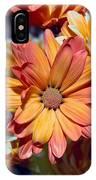 Vibrant Daisies IPhone Case