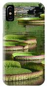 Victoria Amazonica Giant Lily Pads  IPhone Case