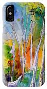 Vieux-boucau 05 IPhone Case