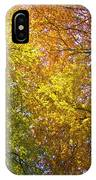 View To The Top Of Beech Trees IPhone Case