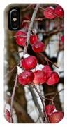 Vignettes - Snow Fruit IPhone Case