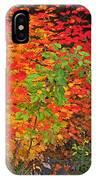Vine Maple In Oregon IPhone Case