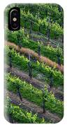 Vineyard Rows - Slovenia IPhone Case