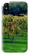 Vineyards In California IPhone Case