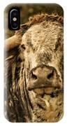 Vintage Longhorn Cattle IPhone Case