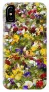 Viola Tricolor IPhone Case